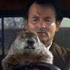 Bill Murray in Groundhog Day.