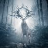 Netflix deelt eerste beelden verfilming boekenreeks 'Shadow & Bone'