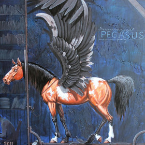 avatar van Film Pegasus