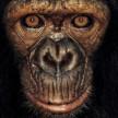 avatar van laurel