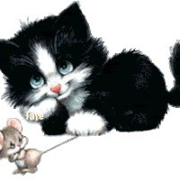 avatar van Lacuna1985