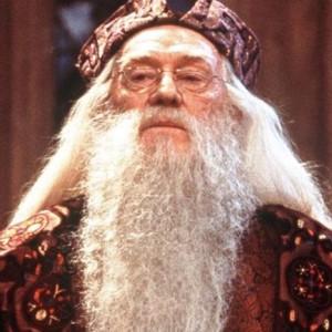 avatar van Dumbledore