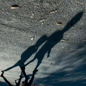 avatar van Badalamenti