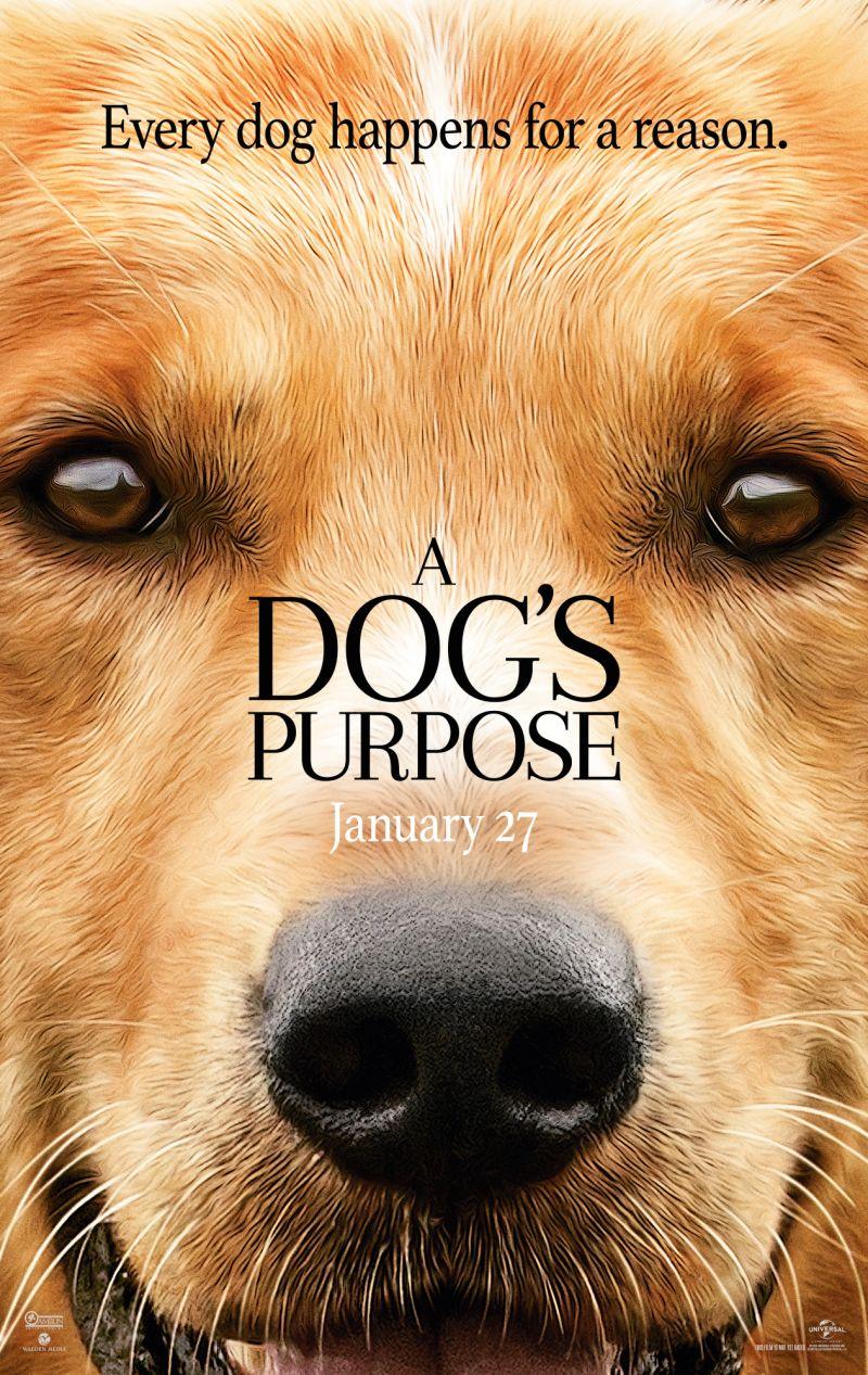 Dog S Purpose Imdb