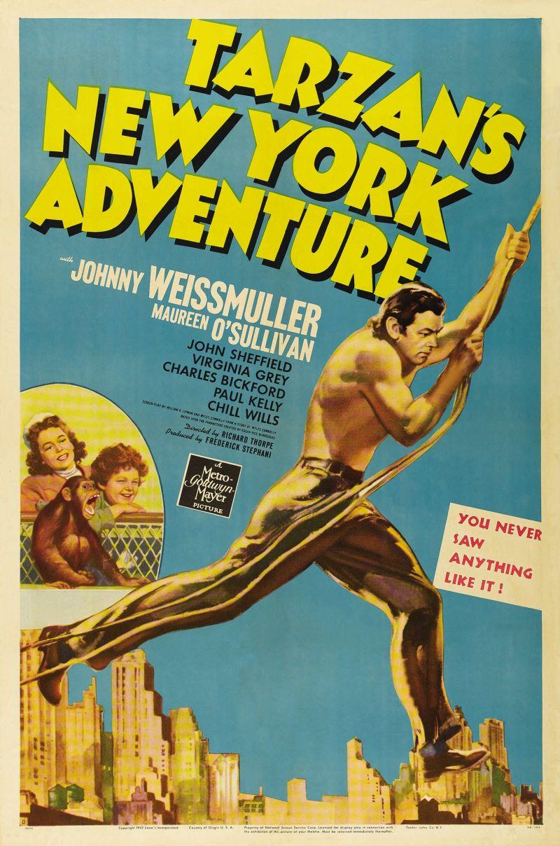 Tarzan s New York Adventure Details