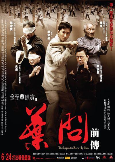 Yip Man Chin Chyun (2010)