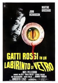 Gatti Rossi in un Labirinto di Vetro