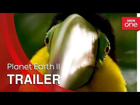 Planet Earth II: Trailer - BBC One