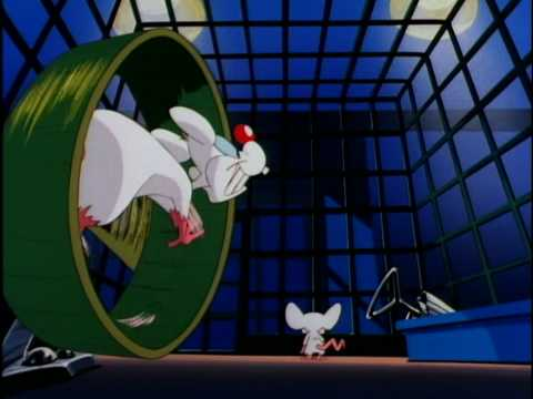 Pinky and The Brain Intro